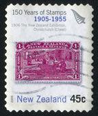 Maori — Stock Photo