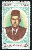Ahmed Amin Philosopher — Stock Photo