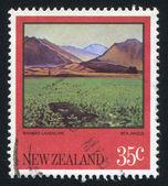 Wanaka landschap — Stockfoto
