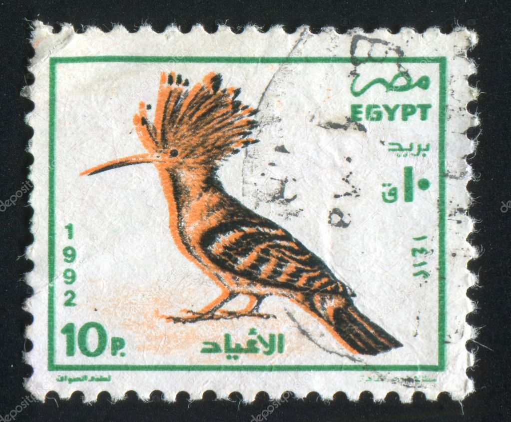 EGYPT - CIRCA 1992: stamp printed by Egypt, shows Egyptian hoopoe, circa 1992 — Stock Photo #10543853