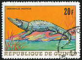 Nile crocodile — Fotografia Stock