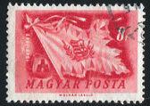 ハンガリーの旗 — ストック写真