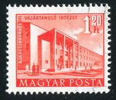 Budapest Building — Stock Photo