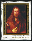 Albrecht Durer — Stock Photo