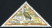 Eurasian crane — Stock Photo