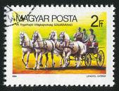 Horse-Drawn Wagon — Stock Photo