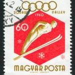 Постер, плакат: Ski jumper