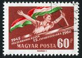 National liberation — Stock Photo