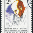 Foto de Stock  : Robert Koch
