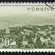 Turkey Mus - Stockfoto