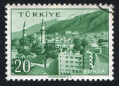 Bursa — Photo
