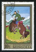 Taming wild horse — Stock Photo