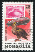 Graf Zeppelin and sea eagle — Stock Photo