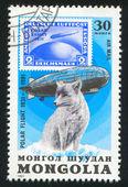 Graf Zeppelin and polar fox — Stock Photo