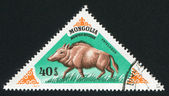 Stamp printed by Mongolia — 图库照片