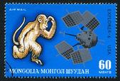 Macaco e explorer — Foto Stock
