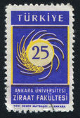 Ankara university — Stock Photo