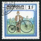 Avec les vélos — Photo