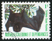 Stamp printed by New Caledonia — Stock Photo