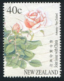 Stamp printed by New Zealand Rose — Foto de Stock