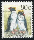 Fiordland crested penguin — Stock Photo
