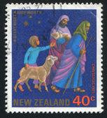 Viaggiatori con pecore e un ragazzo — Foto Stock