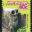 Letterbox Owl — Stock Photo
