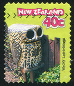 Letterbox Owl — Stock Photo
