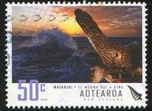 Storming Sea and Maori Boat — Stock Photo
