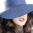 Stock Photo: Blue hat