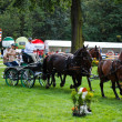Carriage drive show in strzegom at HSBC FEI World Cup 2009 — Stock Photo
