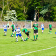 Football match — Stock Photo #8769619