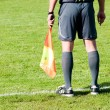 Football referee on the line - Stock Photo