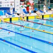 Foto Stock: Swimmers starting to competition