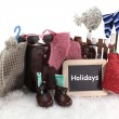 Winter holidays — Stock Photo