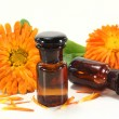 Marigold tincture — Stock Photo #10137079