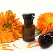 Marigold tincture — Stock Photo
