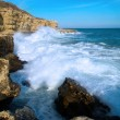 Big waves breaking on the shore — Stock Photo #9132051
