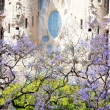 Stock Photo: Spring time in Barcelona