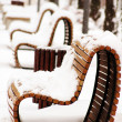 Wooden park bench in a sunny day - winter time — Photo