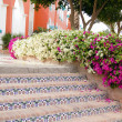 Stairs and bougainvillea - Stock Photo