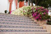 Buganvílias e escadas de telhas cerâmicas — Foto Stock