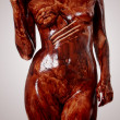 Naked  body covered with chocolate - Stock Photo