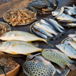 Fish market in Kerala, India — Stock Photo