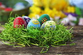 Easter eggs — Stock fotografie