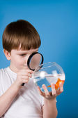 Boy and goldfish — Stock Photo