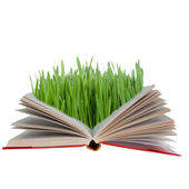 Open book with green grass — Stock Photo