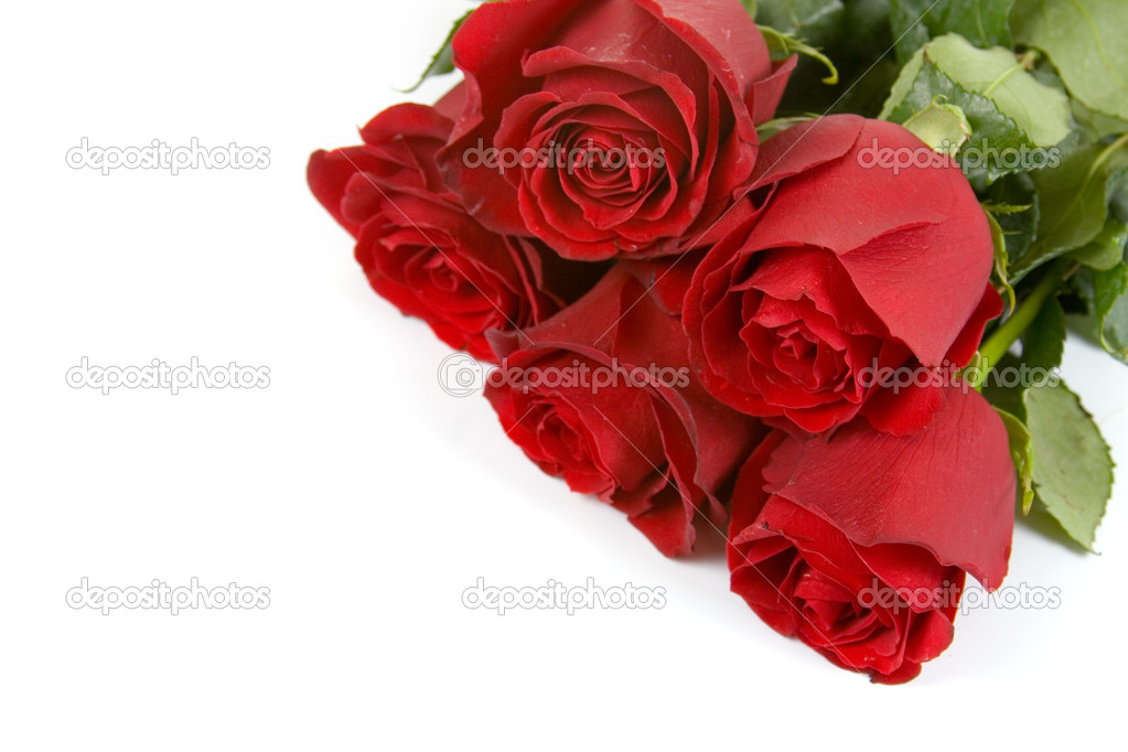 Bouquet of red roses isolated on white background — Stock Photo #10455685