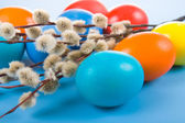 Easter eggs and sprigs of willow — Stock Photo