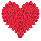 Heart from red roses on a white background — Stock Photo
